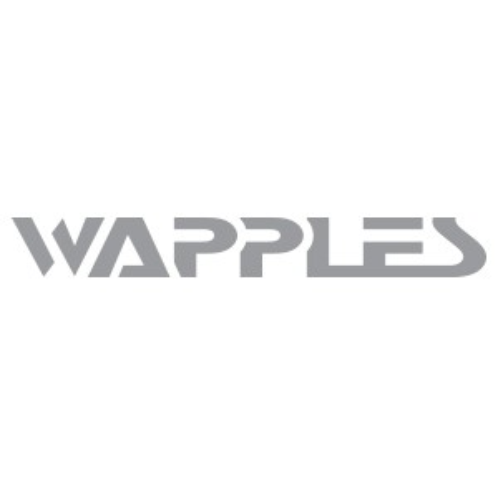 WAPPLES-SA500 (VC8)網站應用程式防火牆(WAF) 1000Mbpslogo圖